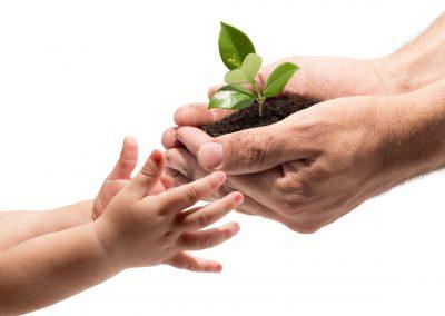 Ristorazione collettiva sostenibile, gli appuntamenti del Forum