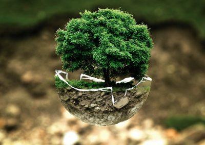 Dati dei Criteri Ambientali Minimi nelle pubbliche amministrazioni e nelle aziende italiane